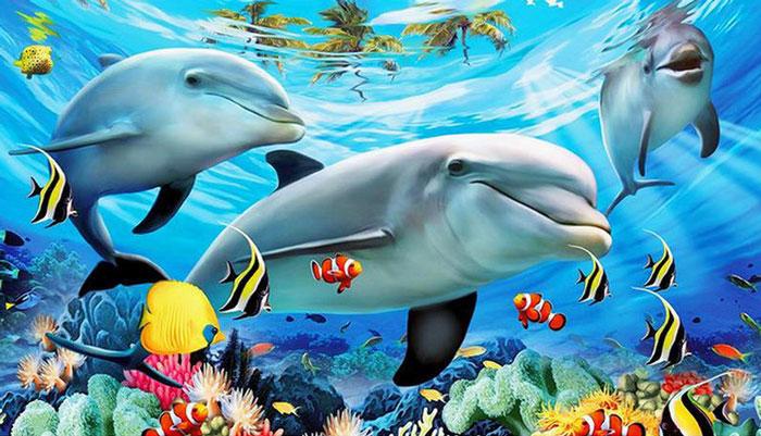 فروش بیمه به روش دلفینها